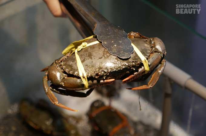 new-thai-tanic-catch-crab