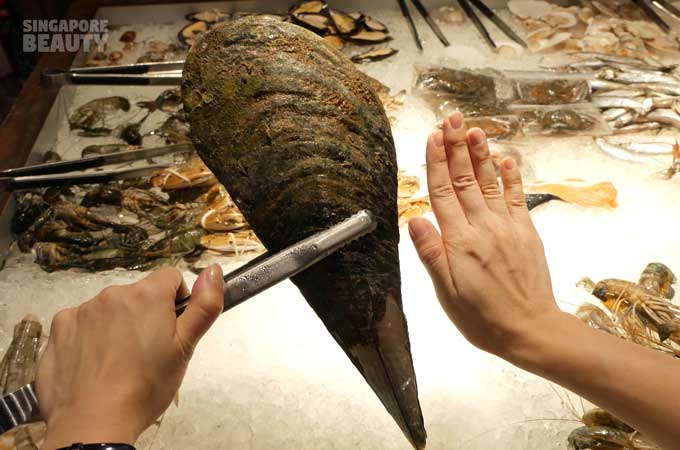 new-thai-tanic-giant-axe-scallop