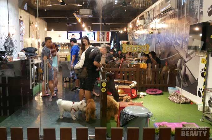 ofur-dog-cafe-shop-frontt