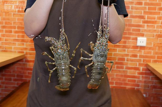 jiugongge-live-lobster
