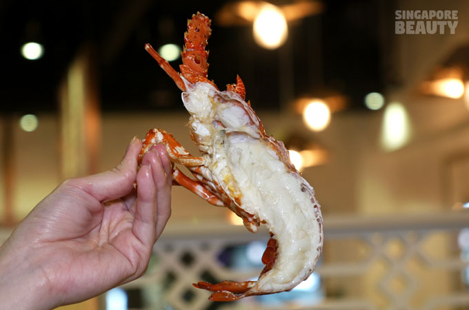 yu-pin-steamed-seafood-live-lobster