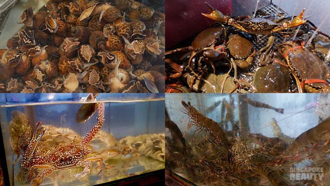 catch-live-seafood