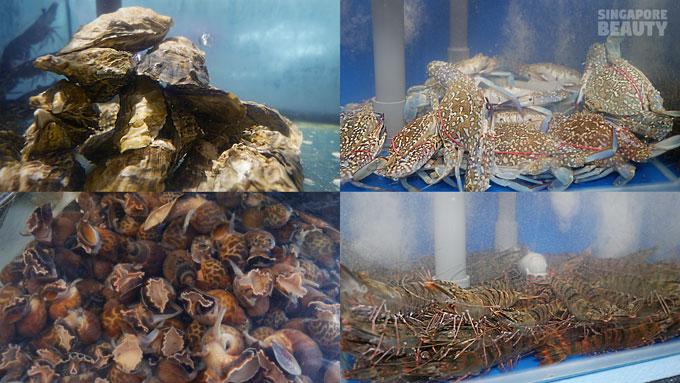 New Thai Tanic Live Seafood Hotpot Buffet – SingaporeBeauty