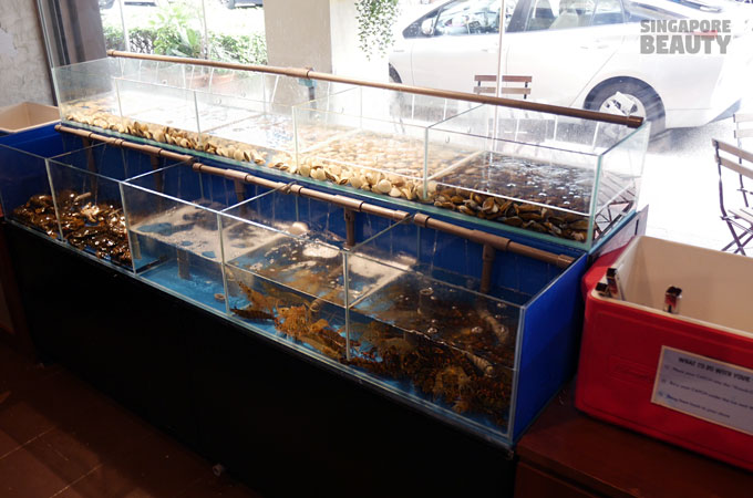 Live Seafood Tank