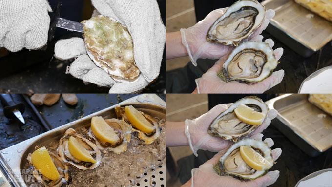 oyster-shucker