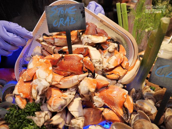 stone-crab