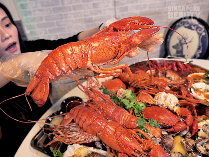boston-lobsters