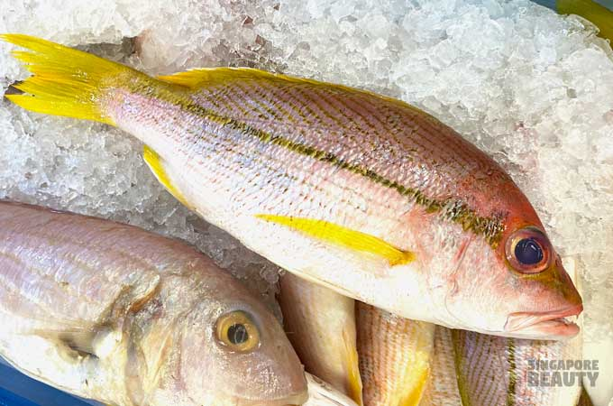 yellow fin snapper