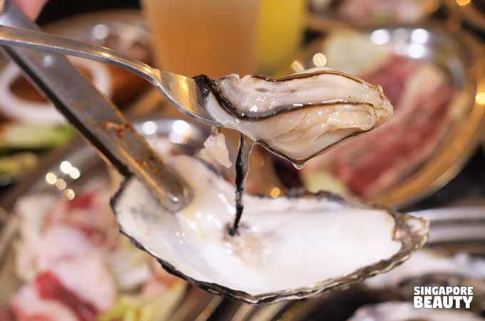 live oysters buffet