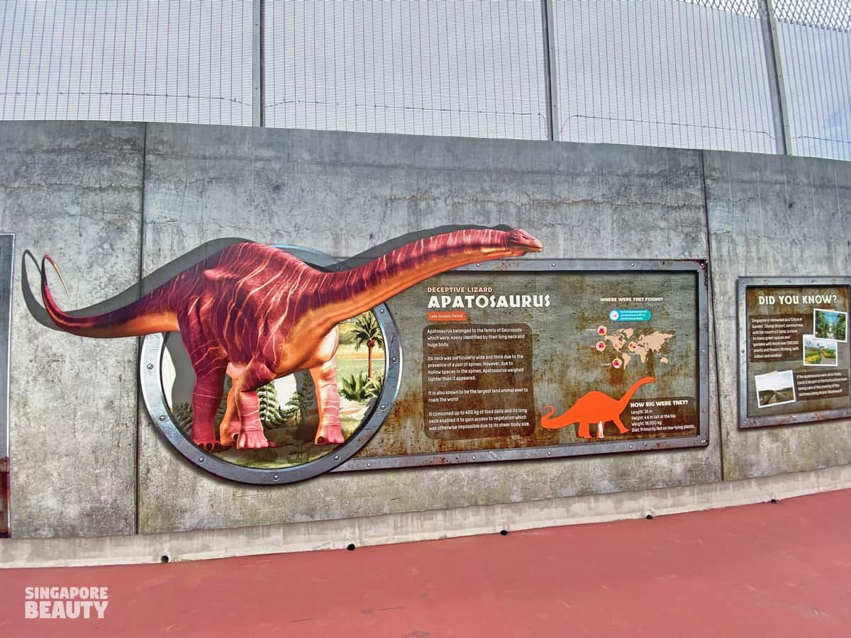 Apatosaurus land dinosaur long neck fun fact
