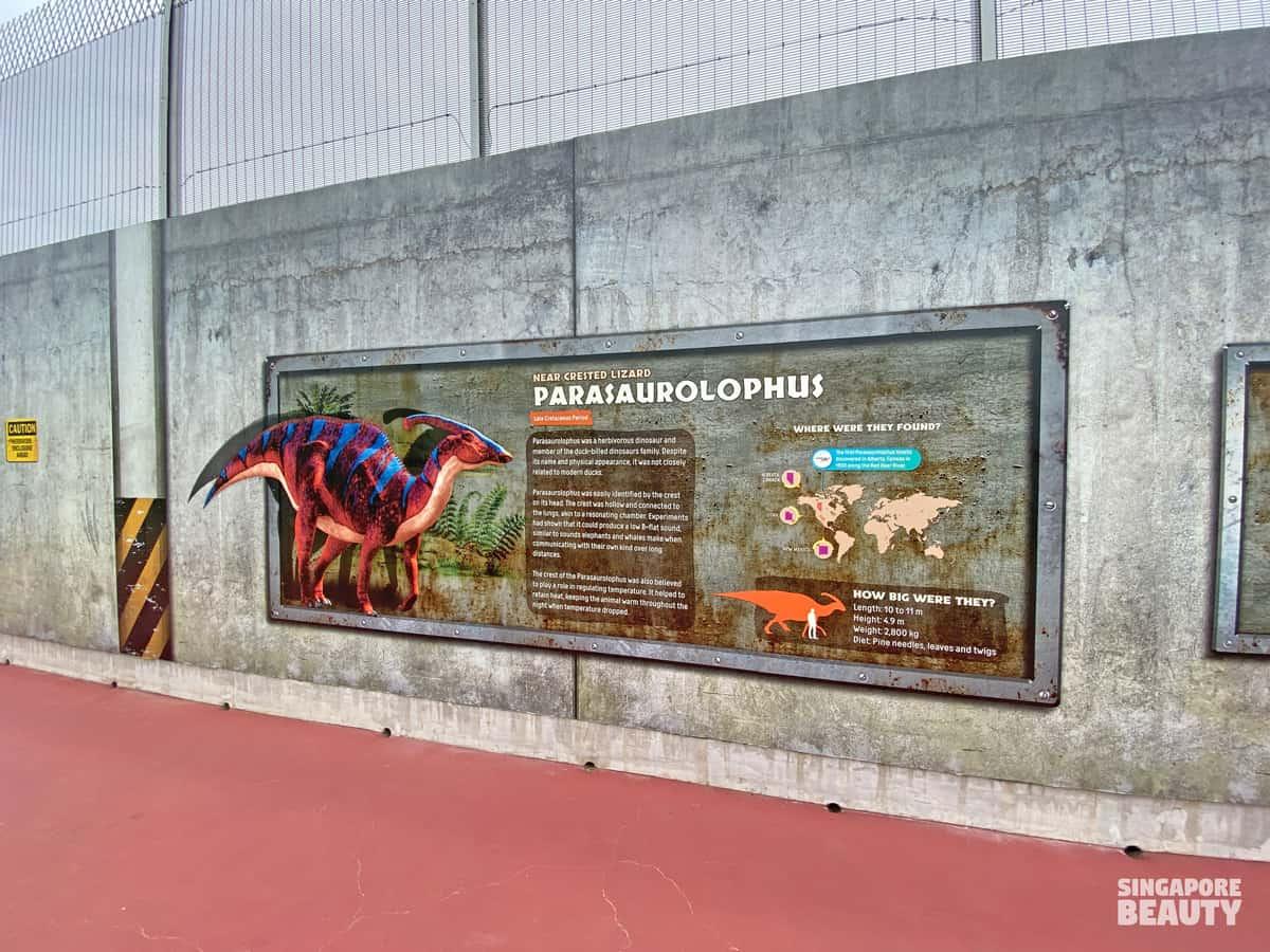 Parasaurolophus fun fact real life Singapore jurassic theme park