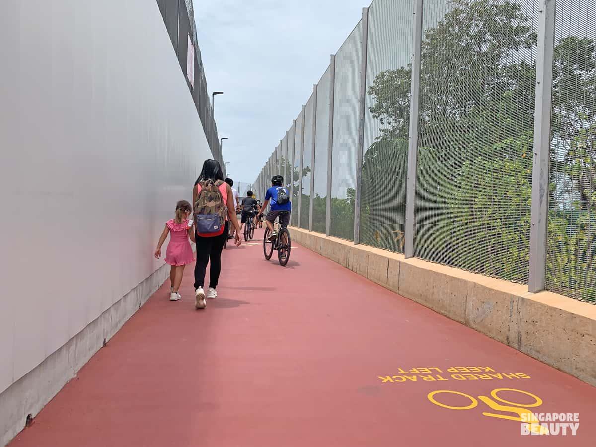 shared track cycling running walking
