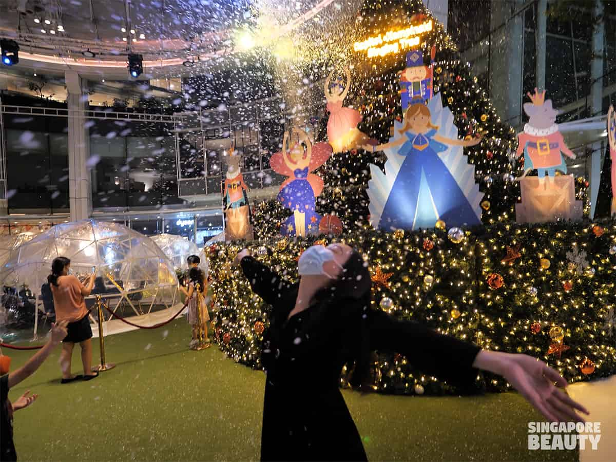 Dome-dining-capitol-singapore-chijmes-snow-timing