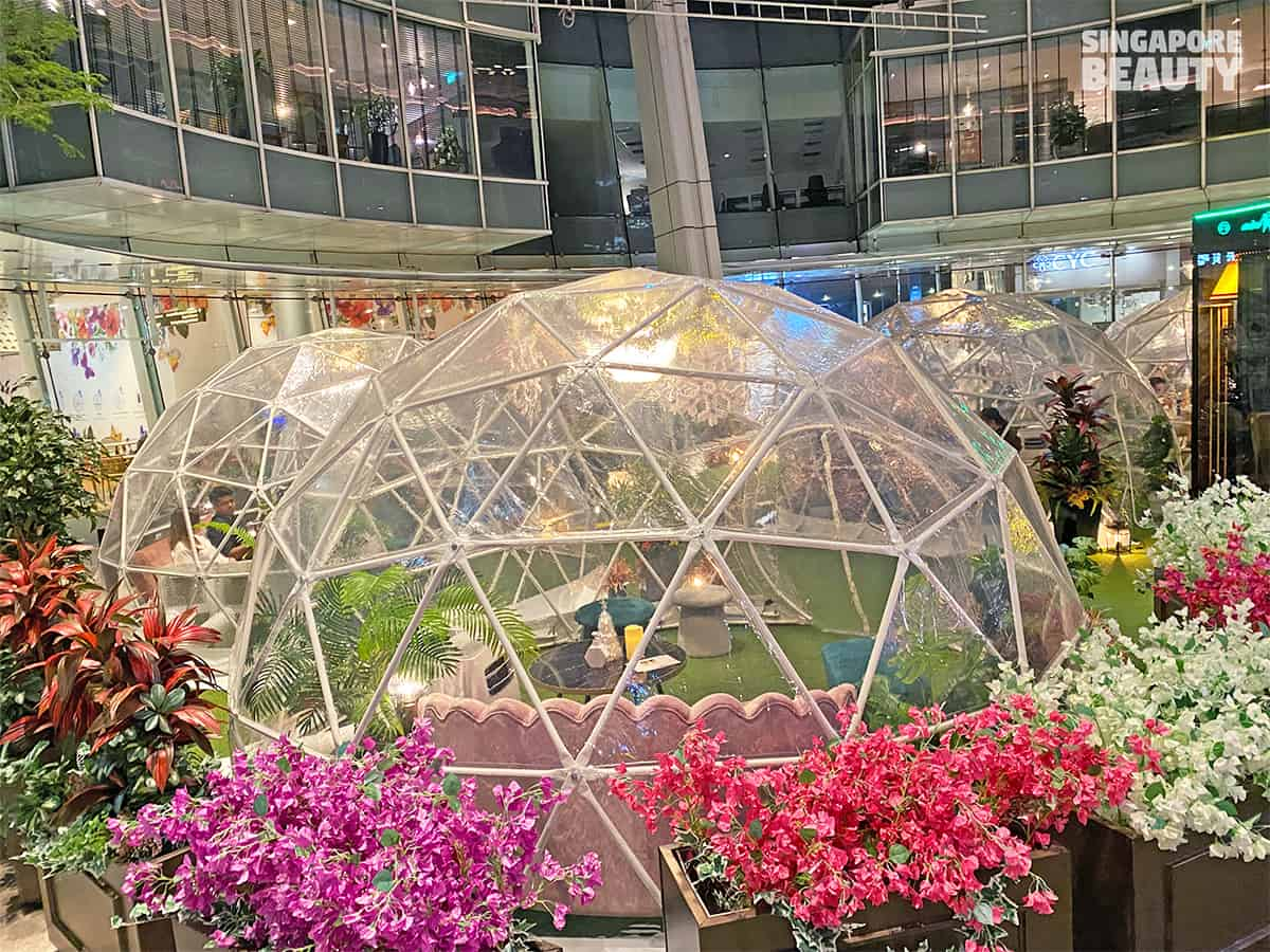Dome dining capitol singapore chijmes