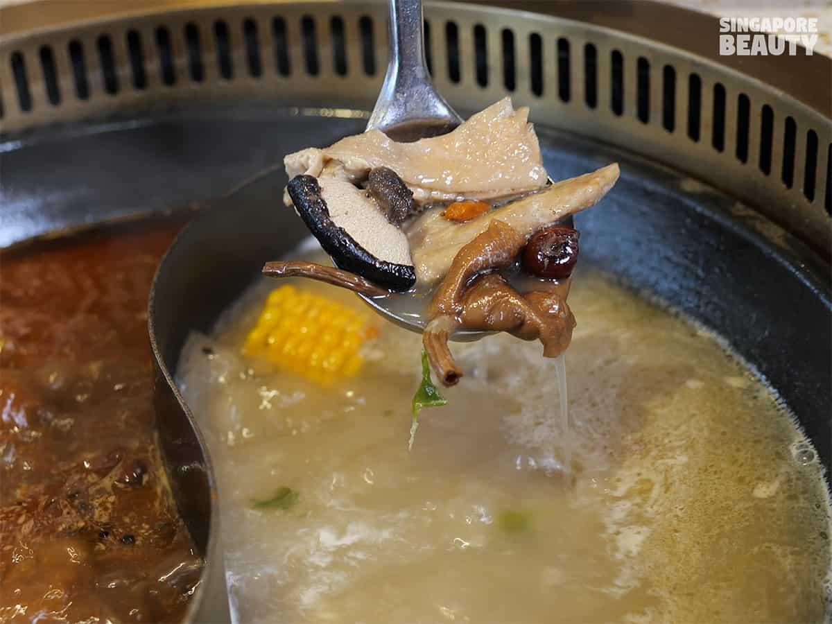 tea tree lingzhi wild mushroom chicken soup