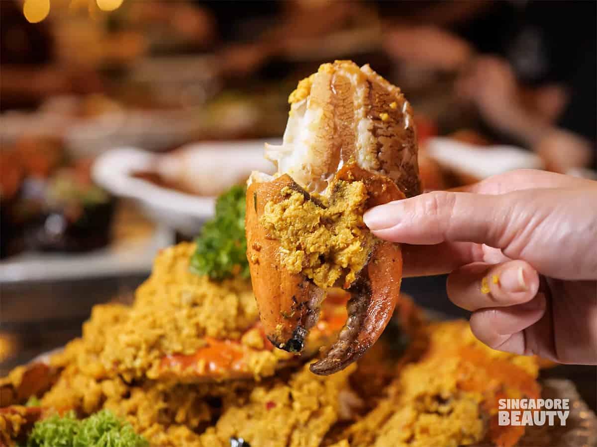 large mud crab singapore