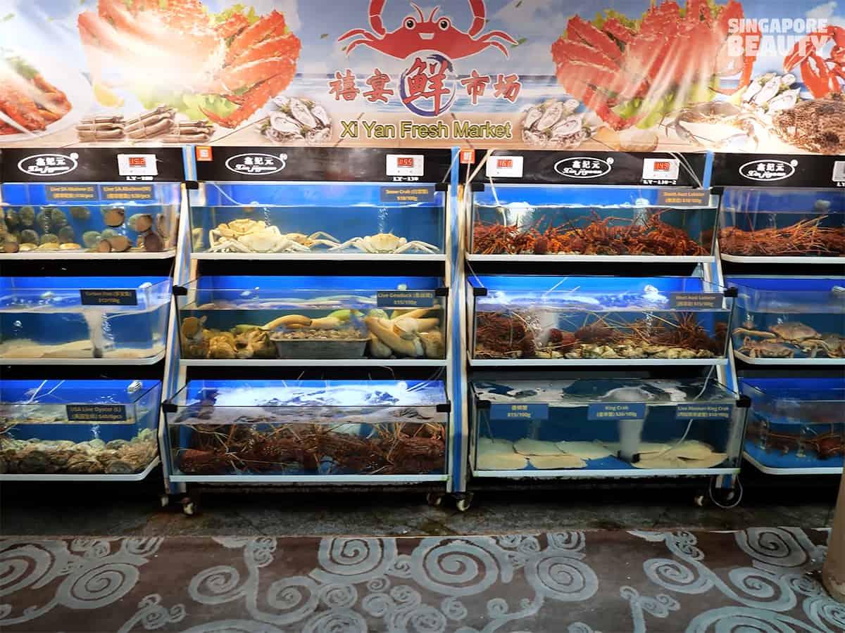 xi yan seafood restaurant fresh seafood market Singapore